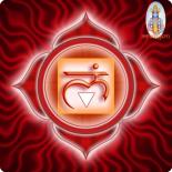 Муладхара-чакра: топография, активация и связь с негативными стереотипами