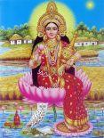 Бхуми-марма