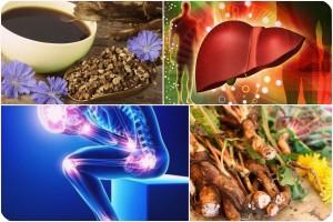 Artroza tratament Ayurveda, Artroza – ce este, tratament si simptome   CENTROKINETIC